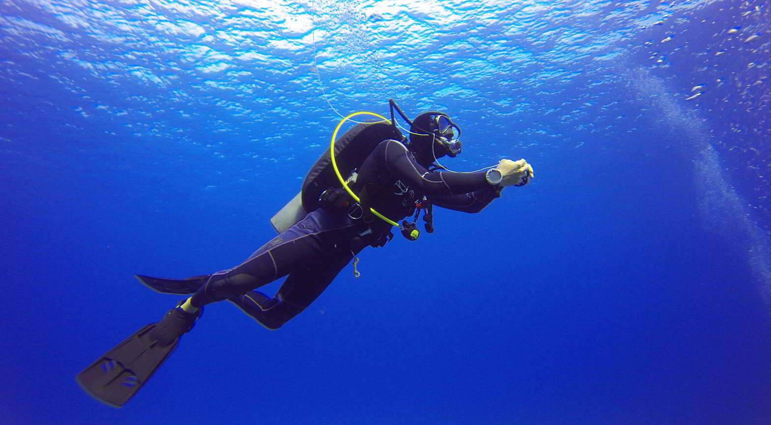 Padi scuba diver course planet bali dive for Dive planet